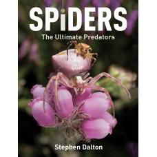 Spiders: The Ultimate Predators