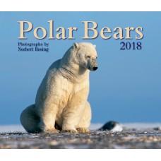 Polar Bears 2018